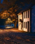 Autumn Time in Brigus