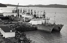 Atlantic Fish Processors Co. Ltd Stern Trawler Fleet at Marystown
