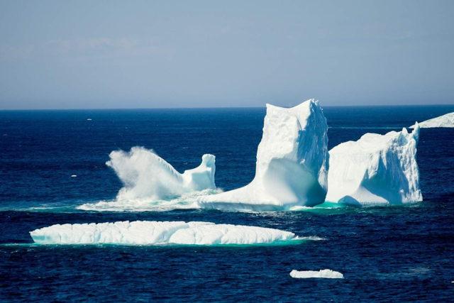 Cape Spear Iceberg 1