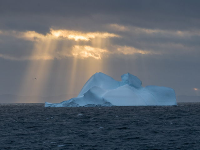 Iceberg with Sun Rays Old Perlican