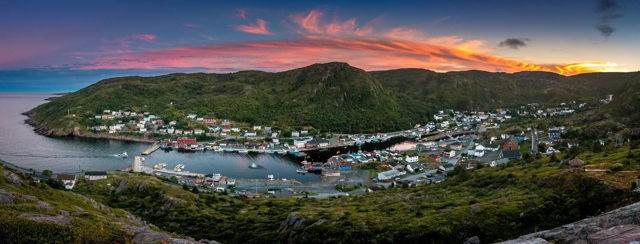 Petty Harbour Gold