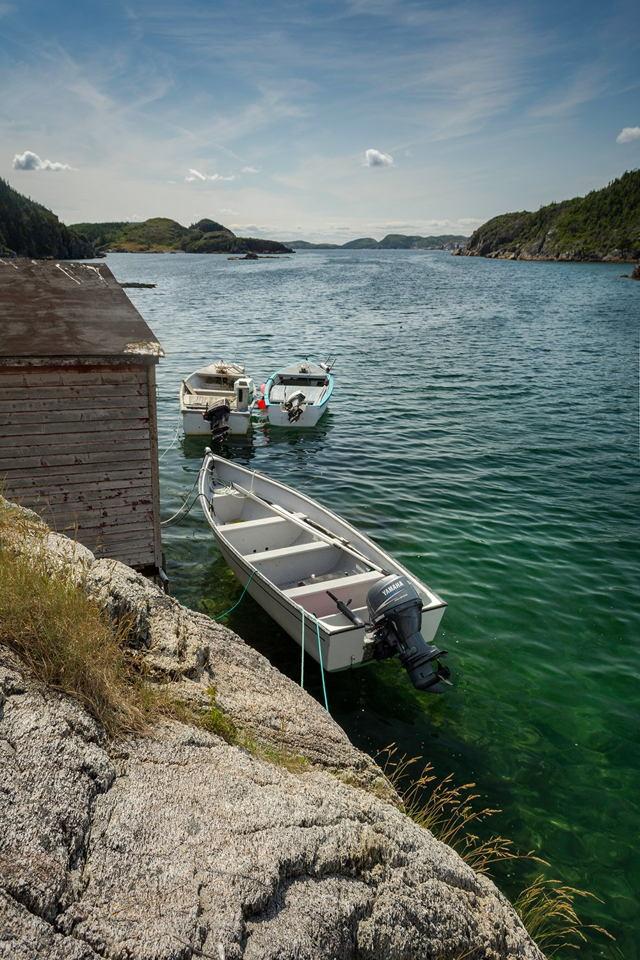 Little Boats Of Newfoundland