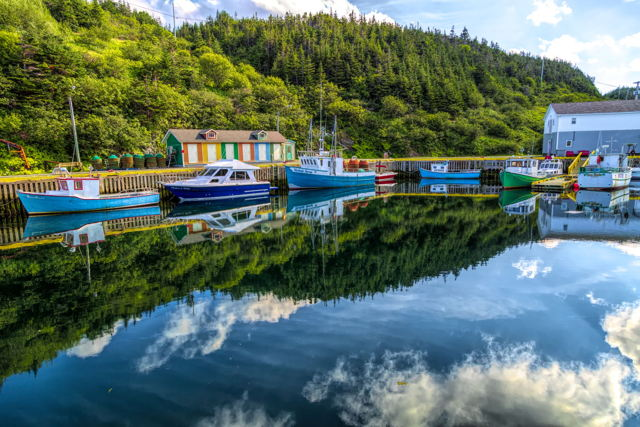 Ship Cove Reflection