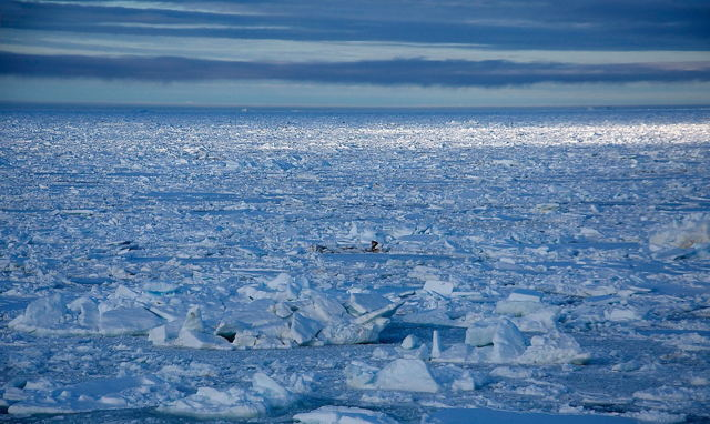 Northern Ice in May