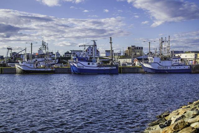 Boats Of Bonavista