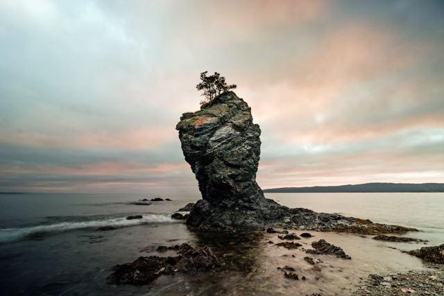 Nature's Pillar