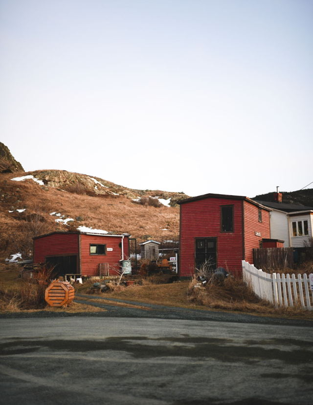 Red Shed in The Cove