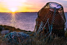 Crab Pots Sunset