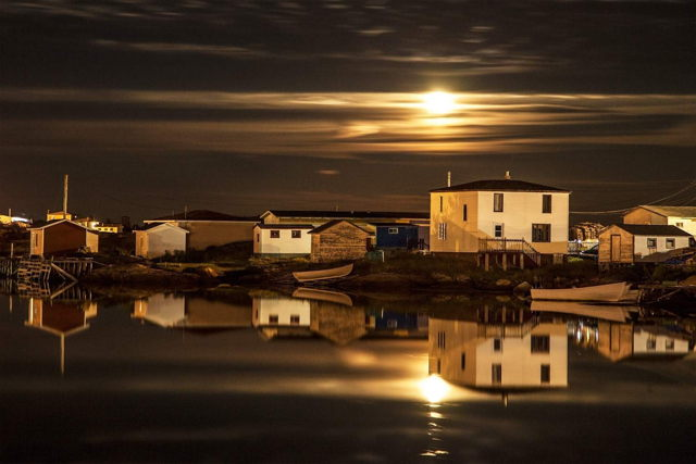 Golden Reflection - Badger's Quay