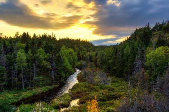Picturesque Newfoundland