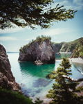 Summer in Chance Cove