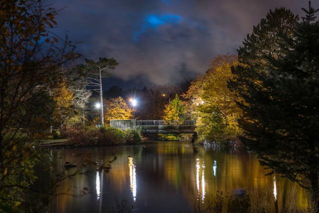 Bowring Park Blue Hour
