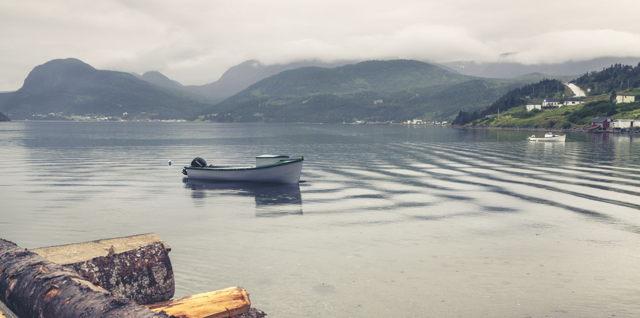 Mauzy Day in Bonne Bay