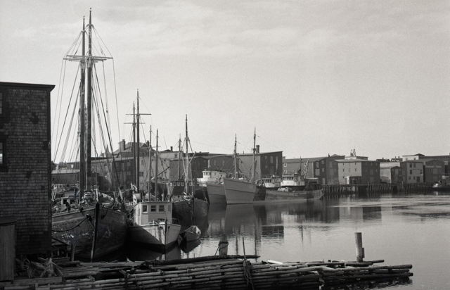 Grand Bank Harbour early 1950's