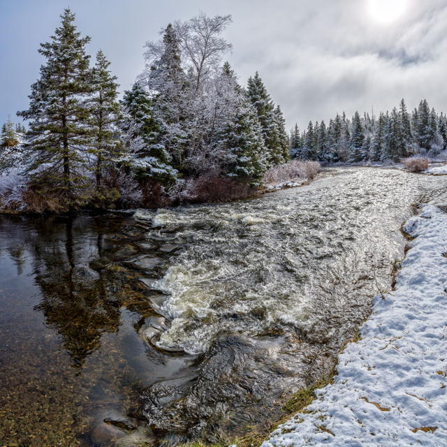 Winter Brook