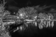 Calm Winter Night, Bowring Park