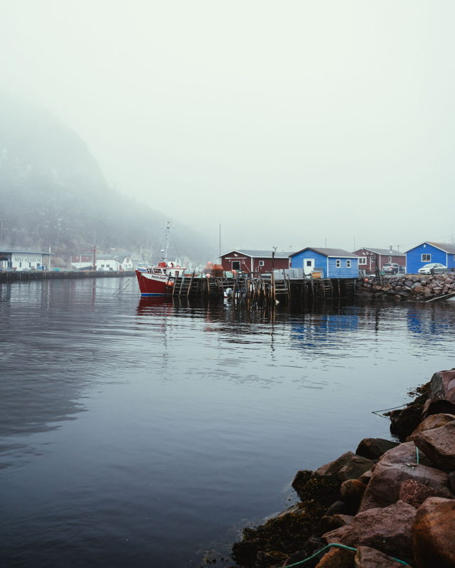 Down in Petty Harbour