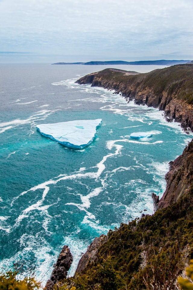 Torbay Iceberg 3685