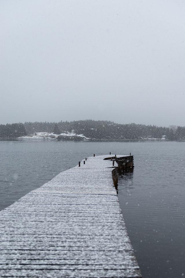 Snowy Warf