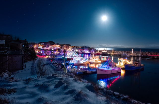 Moon Light Night, Port De Grave