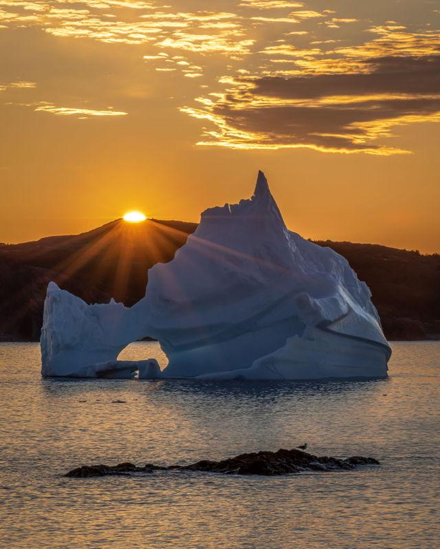 Twillingate Iceberg Sunrise