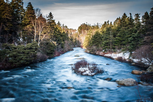 Flow, Manuels River