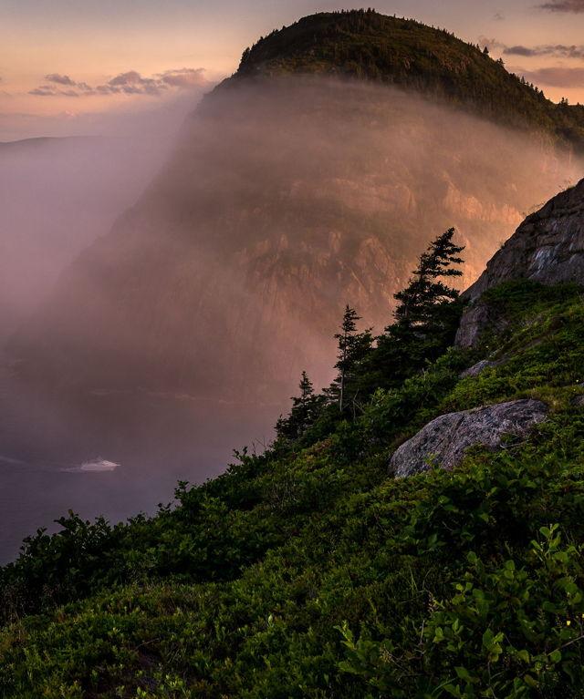 Quidi Vidi Fog Sunset