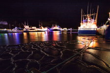 Christmas in the Harbour 2