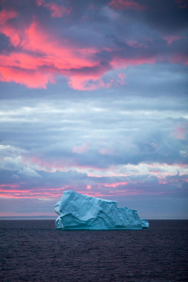 Iceberg in Portugal Cove-St. Philip's