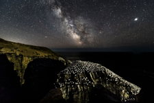 Cape St. Mary's Milky Way
