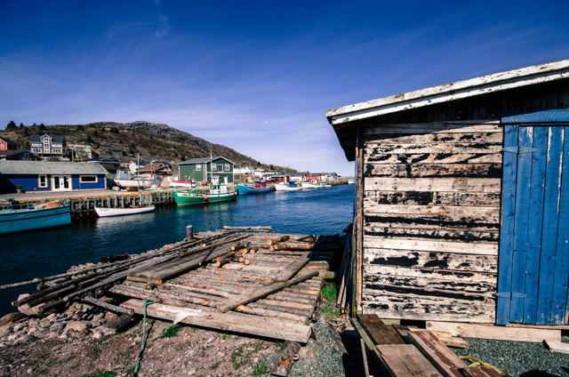 Petty Harbour. NL Blue