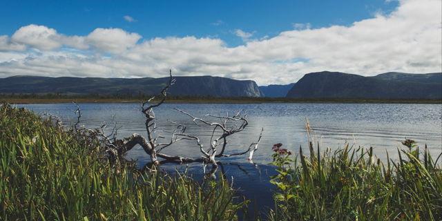 Western Brook Trail - Gros Morne