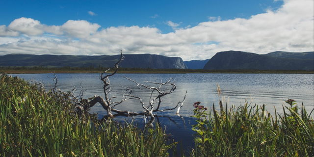 Western Brook Trail - Gros Morne