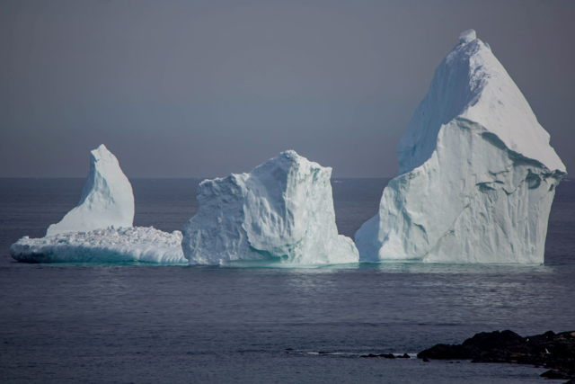 Ferryland Iceberg 5