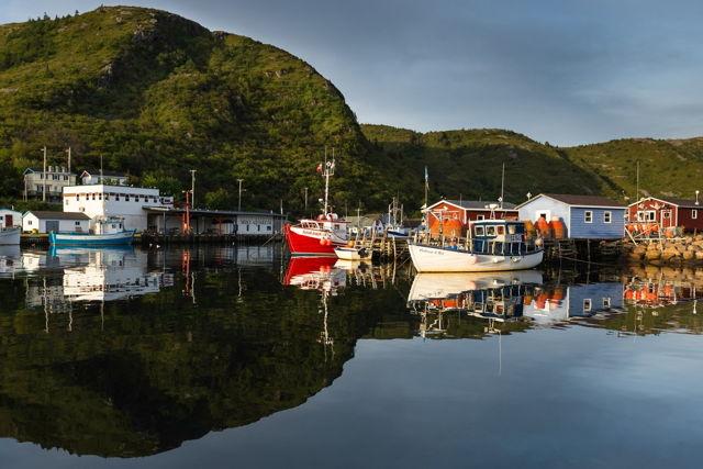 Petty Harbour Sunshine