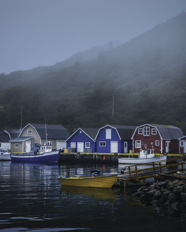 Foggy Day Petty Harbour