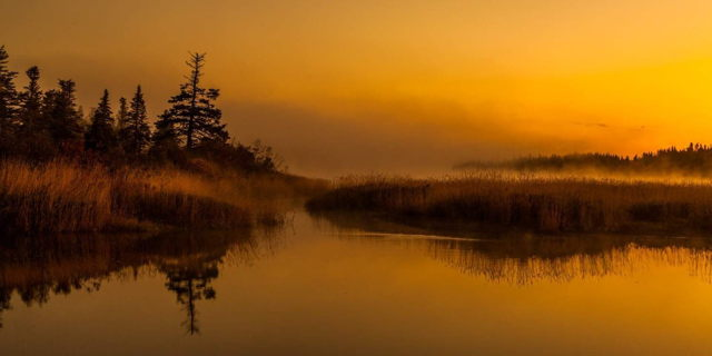 Early Morning Mist - Deer Lake