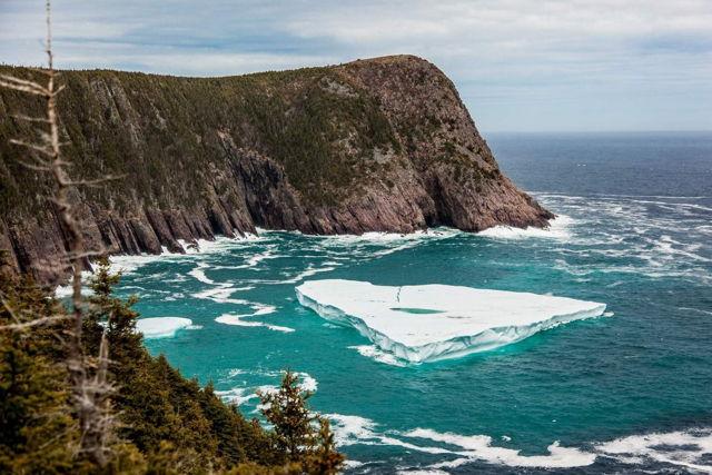 Torbay Iceberg 3679