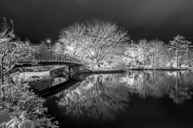 Bowring Park - St. John's