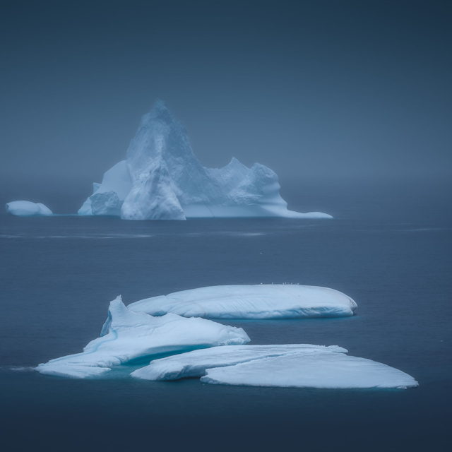 Iceberg in the Mist