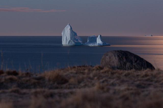Iceberg in Ferryland