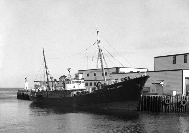 Grand Bank side-trawler 'Blue Wave' - lost with her 16-man crew Feb. 9, 1959.