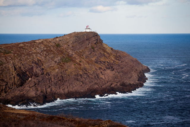 Cape Spear Rugged Shoreline
