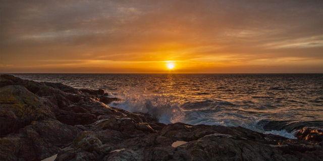 Golden Shores - Bauline