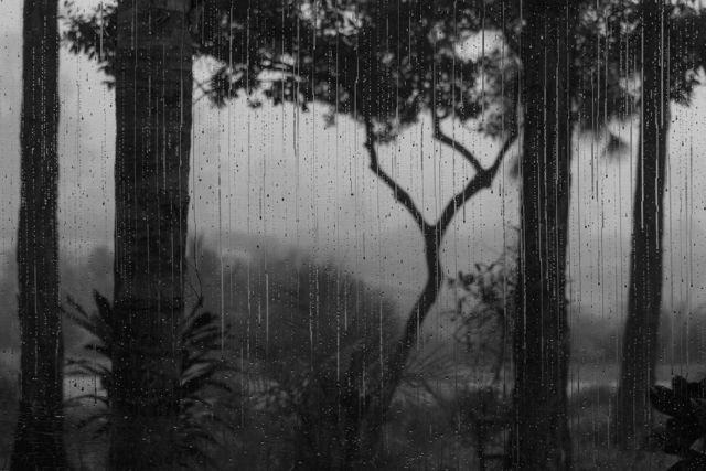 Rain on the Lanai