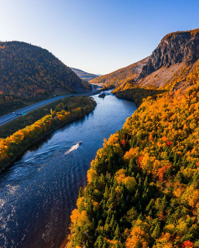 Peak Fall Colours in the Humber Valley