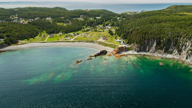 Wild Cove