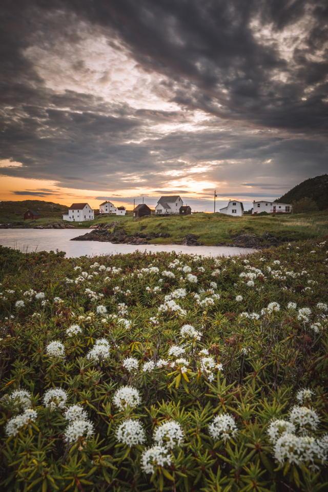 A Salt Harbour Sunrise