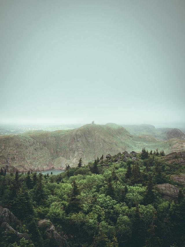 Signal Hill in Fog