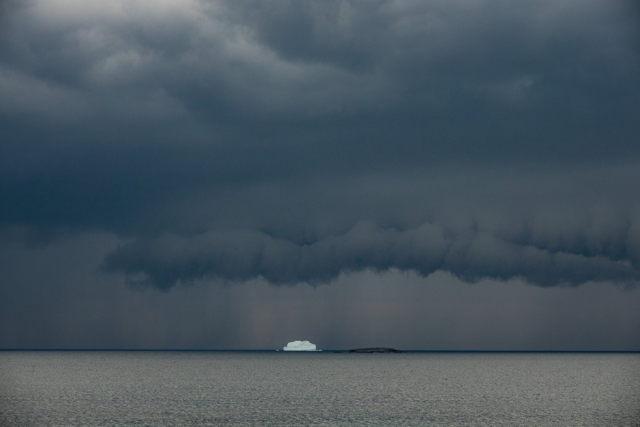 Iceberg at Red Cove Bonavista